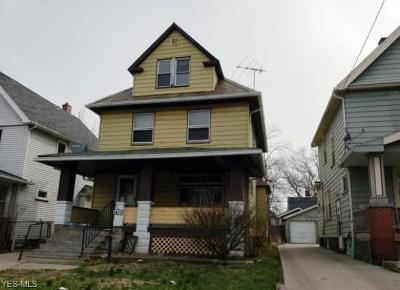 Cleveland Single Family Home For Sale: 2077 West 91st St