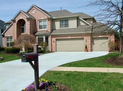 Strongsville Single Family Home For Sale: 20084 Kylemore Dr