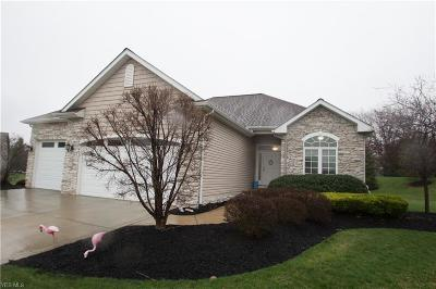 Mentor Single Family Home Contingent: 8698 Wild Flower Way