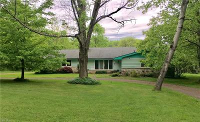 Chagrin Falls Single Family Home For Sale: 39 Morningside Dr