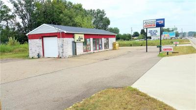 Canton Commercial For Sale: 4641 Hills And Dales Rd Northwest