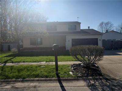 Lorain County Single Family Home For Sale: 416 Cove Beach Ave