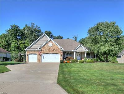 Concord Single Family Home For Sale: 8196 Rainbow Drive