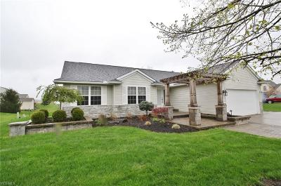 Licking County Single Family Home For Sale: 107 Castleton Ct