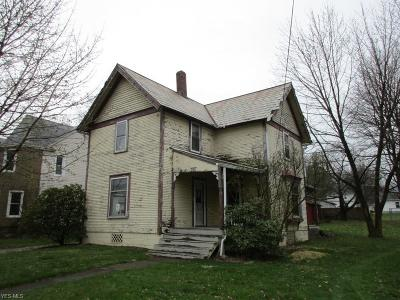 Wadsworth Single Family Home For Sale: 399 High Street