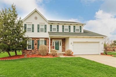 Twinsburg Single Family Home For Sale: 10290 Sandalwood Dr