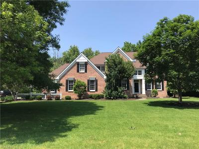 Hudson Single Family Home For Sale: 93 Brandywine Drive