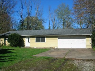 Lorain County Single Family Home For Sale: 38484 East River Rd