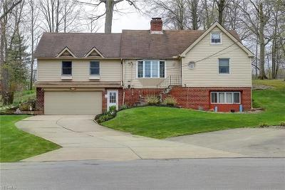 Wickliffe Single Family Home For Sale: 29308 Armadale Avenue