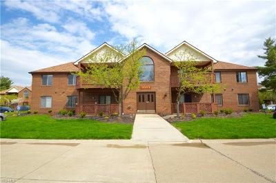 Broadview Heights Condo/Townhouse Contingent: 8663 Scenicview Dr #206