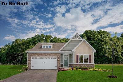 Aurora Single Family Home For Sale: 660 Sunrise Cir