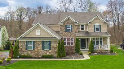 Chagrin Falls Single Family Home Active Under Contract: 7455 Mystic Ridge Road