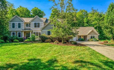 Medina Single Family Home For Sale: 5190 Maplewood Farm Dr