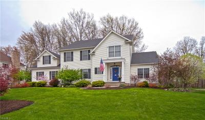 Hudson Single Family Home Active Under Contract: 157 Cheshire Road