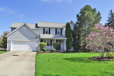 Twinsburg Single Family Home For Sale: 2325 White Marsh Dr