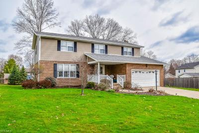 Massillon Single Family Home For Sale: 2534 Tanglewood Dr Northeast
