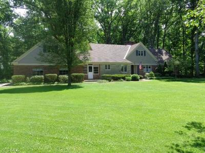 Olmsted Falls Single Family Home For Sale: 9265 Lindbergh Blvd