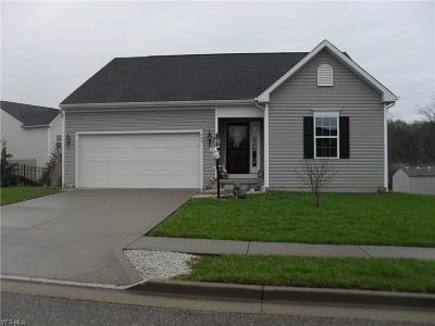 Massillon Single Family Home For Sale: 880 Starr Ridge St Southeast