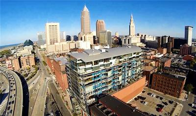 Cleveland OH Condo/Townhouse For Sale: $695,000