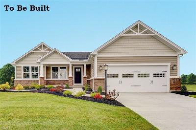 Canton Single Family Home For Sale: 3115 Boettler St Northeast