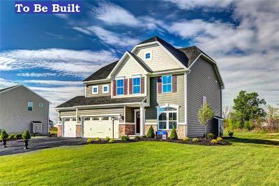 Canton Single Family Home For Sale: 3073 Boettler St Northeast