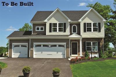 Stark County Single Family Home For Sale: 3195 Boettler St Northeast