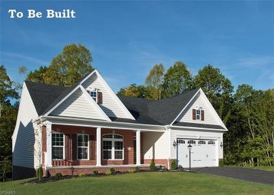 Stark County Single Family Home For Sale: 3255 Boettler St Northeast