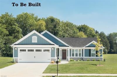 Stark County Single Family Home For Sale: 3049 Boettler St Northeast