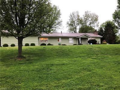 Marietta Single Family Home For Sale: 510 Chamberlain Drive