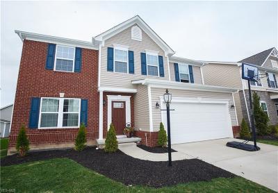 Twinsburg Single Family Home For Sale: 10406 Fox Hollow Cir