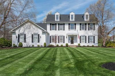 Brecksville Single Family Home For Sale: 9958 Highland Drive