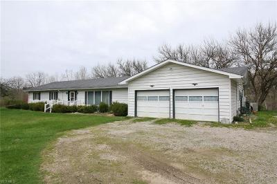 Muskingum County Single Family Home For Sale: 2800 West Pike