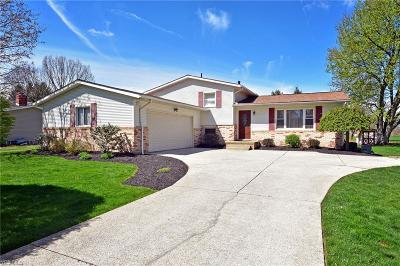 Stark County Single Family Home For Sale: 8597 Lansdale Ave Northwest