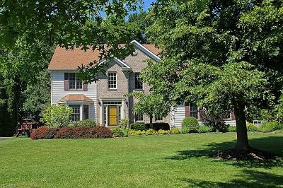 Chagrin Falls Single Family Home For Sale: 120 Edgewood Ct