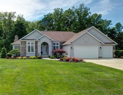 Concord Single Family Home For Sale: 8210 Rainbow Drive