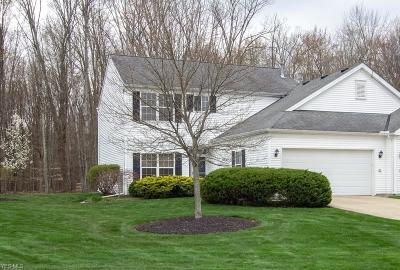 Reminderville Condo/Townhouse Active Under Contract: 3408 Heron Court