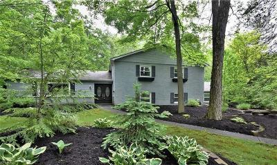 Chagrin Falls Single Family Home For Sale: 17969 Lost Trail