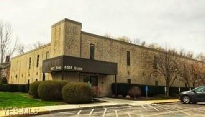 Ashtabula Commercial For Sale: 4817 State Road