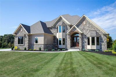 Medina Single Family Home For Sale: 6040 Oban Ct
