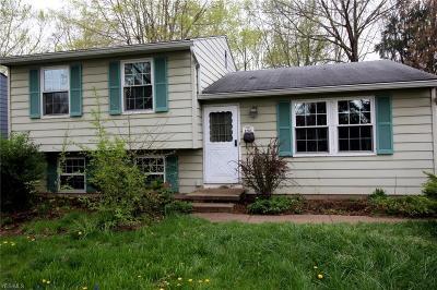Kent Single Family Home For Sale: 1266 Carol Drive