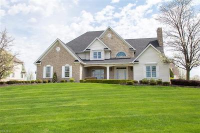 Medina Single Family Home For Sale: 3993 Fairway Dr