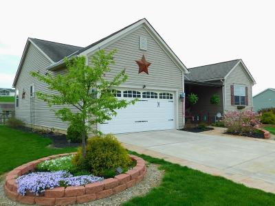 Licking County Single Family Home Contingent: 657 Creeks Edge Dr