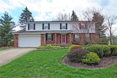 Solon Single Family Home Contingent: 37410 Fawn Path Dr