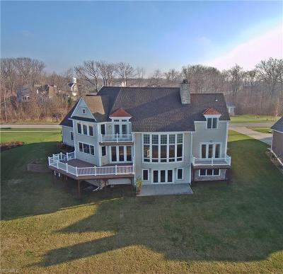 Painesville Township Single Family Home For Sale: 1680 N Shore Drive