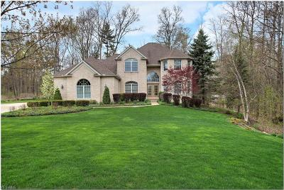 Hinckley Single Family Home Active Under Contract: 254 Somerset Drive