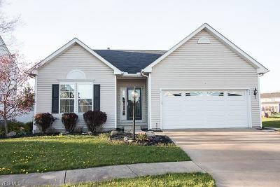 Northfield Single Family Home Contingent: 575 Brookpointe Cir