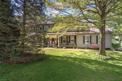 Hudson Single Family Home For Sale: 1890 Stoney Hill Dr