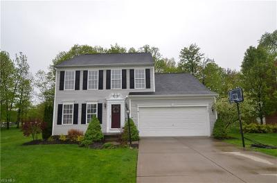 Twinsburg Single Family Home For Sale: 1748 Curry Ln