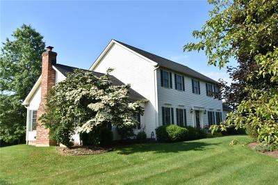 Hudson Single Family Home For Sale: 7475 Andover Way