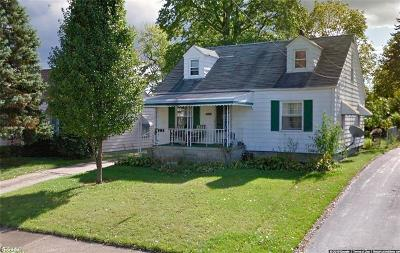 Struthers Single Family Home For Sale: 476 Elm Street